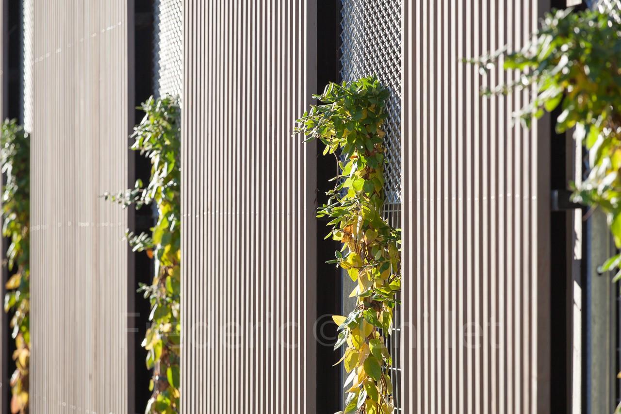 Immeuble-de-bureau-Atelier4+-frederic-chillet-9