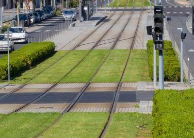 chazal-entretien-des-espaces-verts-du-tramway-t4-Lyon-Frederic-Chillet-1