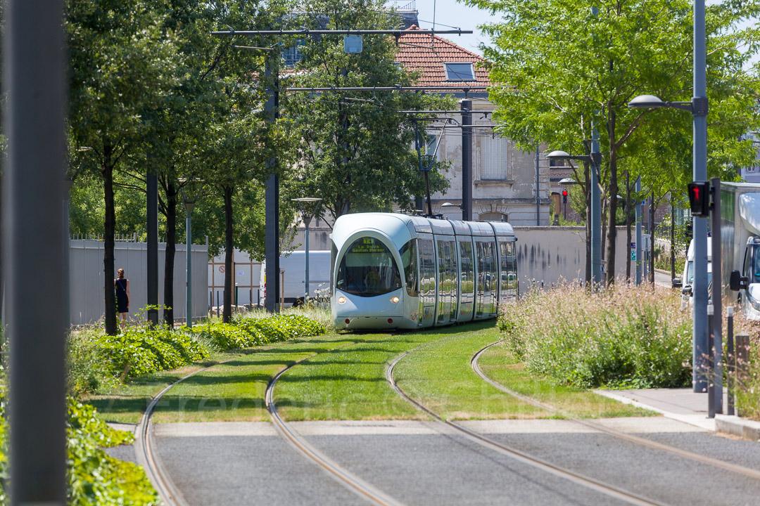 entretien des espaces verts du tramway t4