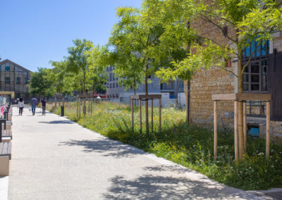 rehabilitation-petite-halle-chazal-Lyon-Frederic-Chillet-1