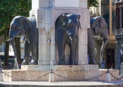 Fontaine-place-des-elephants-chambery-Frederic-Chillet-2