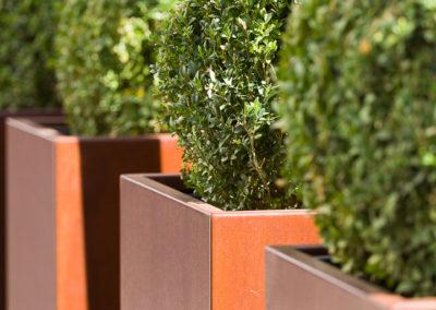 amenagement-vegetal-green-prospect-Lyon-007